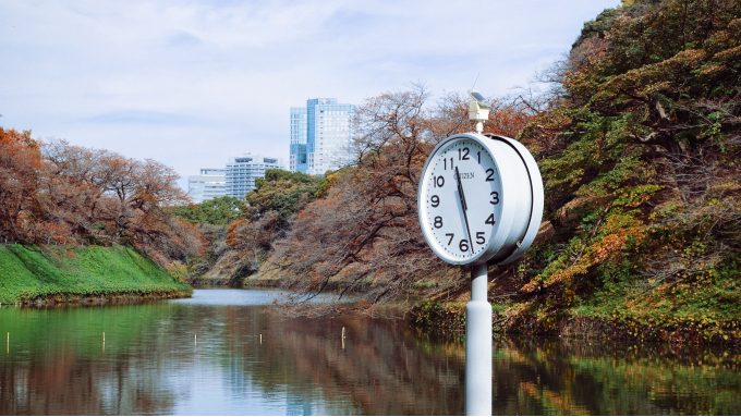 Clock in front of stream surrounded by trees